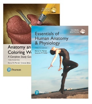 Essentials of Human Anatomy & Physiology, Global Edition + Anatomy and Physiology Colouring Workbook: A Complete Study Guide, 12th edition 2017